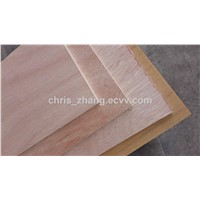 Multi-Layer Commercial Plywood ,Furniture Grade Eucalyptus Plywood with E1 Glue