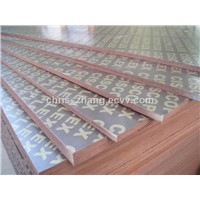 Phenolic Poplar Core Concrete Film Faced Plywood