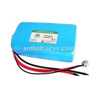 LiFePo4 24V 9.6Ah E-bike Battery Pack