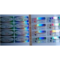 Holographic Laser Reflective Labels in Plastic