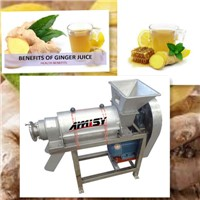 Ginger Juice Extraction Machine