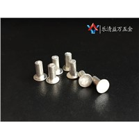 Best seller Production size rivets and step screw stainless steel