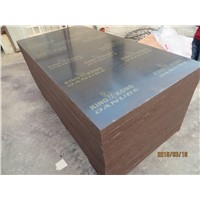 KINGKONG BRAND FILM FACED PLYWOOD, 'MR' GLUE, POPLAR CORE, BLACK FILM Or BLACK PRINTED FILM