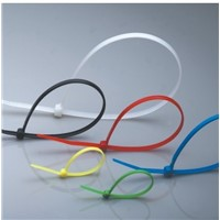 Rohs Cable Plastic Ties