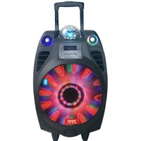 Feiyang speaker color ball speaker bluetooth 10 inch woofer speaker price with disco light