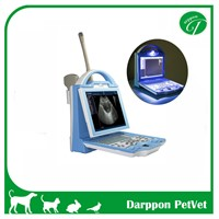 Portable B/W Ultrasound Scanner for Human (KX5600)