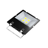150W Brideglux Chip LED Flood Light MW Driver Dimmable with Sensor High Power 20W IP65 IK10