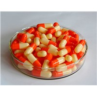 Halal Certified Empty Hard Gelatin Capsule Orange Sizes 0 1 2