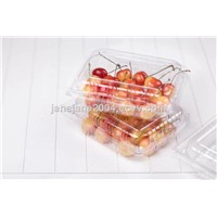Strawberry Transparent Oriented Polystyrene(BOPS) Container