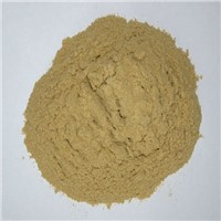 BEST-QUALITY BREWER GRAIN POWDER for Animal Feed