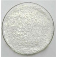 High Purity Praziquantel Powder
