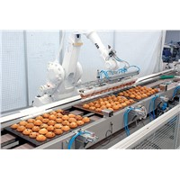 Fully Automatic Industrial Palletizing Robot for Food Packaging