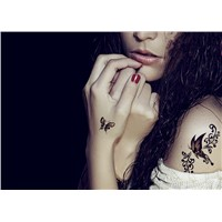 Beautiful Cute Sexy Body Art Beauty Makeup Cool Paper Airplane Waterproof Temporary Tattoo Stickers for Girls & Man