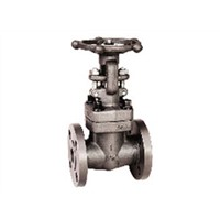 Forged Steel Gate Valve Hot Sale