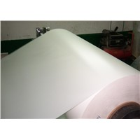 White Opaque Pet Film