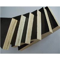 18mm Balck Film Faced Plywood for Kuwait Market