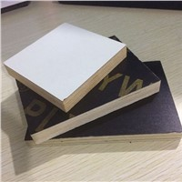 High Quality Plywood/Furniture Plywood/Construction Plywood from China Manufacturer