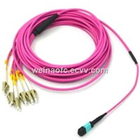Fiber Optic Patch Cord MPO-LC Multimode OM4 12 Cores