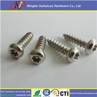 Pin In Torx Pan Head Self Tapping Screws