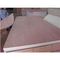 High Quality Okoume/ Bingtago/Poplar/Birch Commercial Plywood