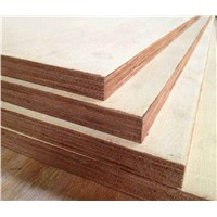 1220x2440x18mm Bintangor Plywood Poplar Core for Furniture