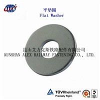 Flat Washer/ Plain Washer