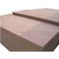 Suttering Plywood