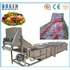 Fruits & Vegetables Washing Machine