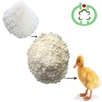 Rice Protein Meal Animal Feed