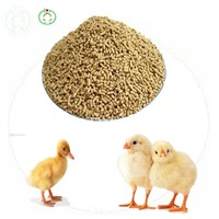 Lysine HCL Feed Additives Poultry Feed