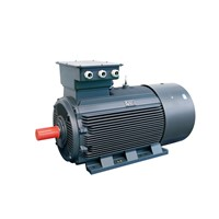 YE2 Series High Efficiency Three Phase Asynchronous Motor