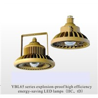 YBL Series Explosion-Proof High Efficiency Energy-Saving LED Lamps(IIC, TD)