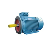 YSB Special Three Phase Asynchronous Motor for Pipeline Pump