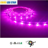 RGB Multi-Color Changeable SMD 5050 Waterproof 30 Leds/m DC12v LED Strip for Decoration