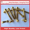 Gold M5X45 Titanium Aerospace Allen Hex Socket Cap Head Bicycle Bolt Screw
