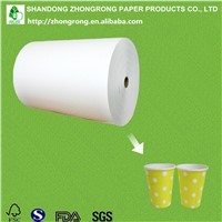 170~320gsm PE Coated Raw Material for Paper Cups
