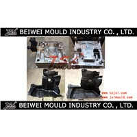 Automotive Plastic Splash Mudguard Injection Mould