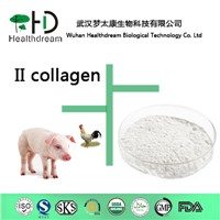 Collagen Type II(Edible Level)