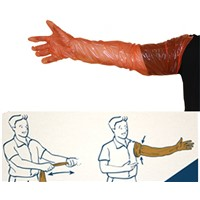 Veterinary Products Cattle Semen Long Sleeve Shoulder Length Disposable Gloves