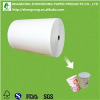 Raw Materials for Paper Cups