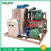 Flake Ice Machine 5000kg Per Day