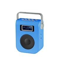 Portable DAB Radio with Dual Clock Alarm