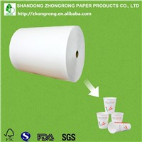 PE Coated Paper Mill