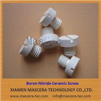 Hot Pressed Boron Nitride Ceramic Screw/Thread Parts