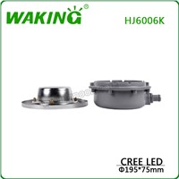 CREE LED POOL LIGHT