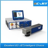 Qr Code Laser Marking Machine/ Laser Marking Printer for Sale (EC-Laser)