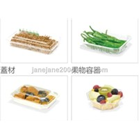 Frozen Food, Fruit, Vegetable Packaging Boxes, Bowl & Container
