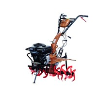 WH950 Gasoline Mini Tiller/Rotary Tiller with Easy Turning System