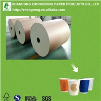 PE Coated Paper Cup Raw Material Jumbo Roll