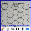 Hexagonal Hole Shape & Construction Wire Mesh Application Small Hole Chicken Wire Mesh
